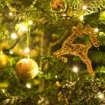 christmas-1849263_640 (2)