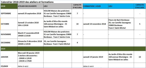 calendrier atelier formation 2018 2019.JPG
